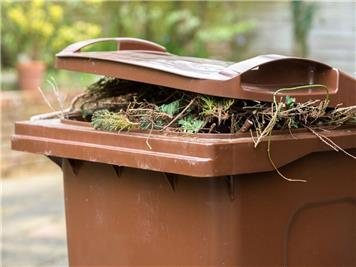 - News about our Brown Garden Bins